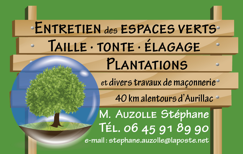 Carte de visite - Auzolle Stéphane